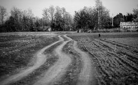 Вождение автомобиля по проселочным дорогам