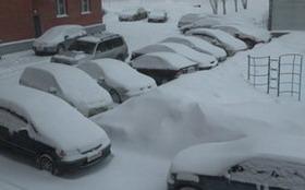 Машина не заводится в мороз. Возможно дело в автосигнализации?